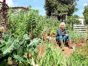 See pensioner's 'sustainable sanctuary' for green home envy