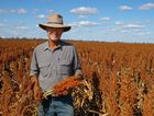 HUGE HARVEST: Greg Cripps on his property at Irvingdale. / Contributed
