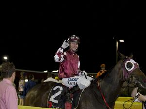 Tinto named Toowoomba Turf Club's horse of the year