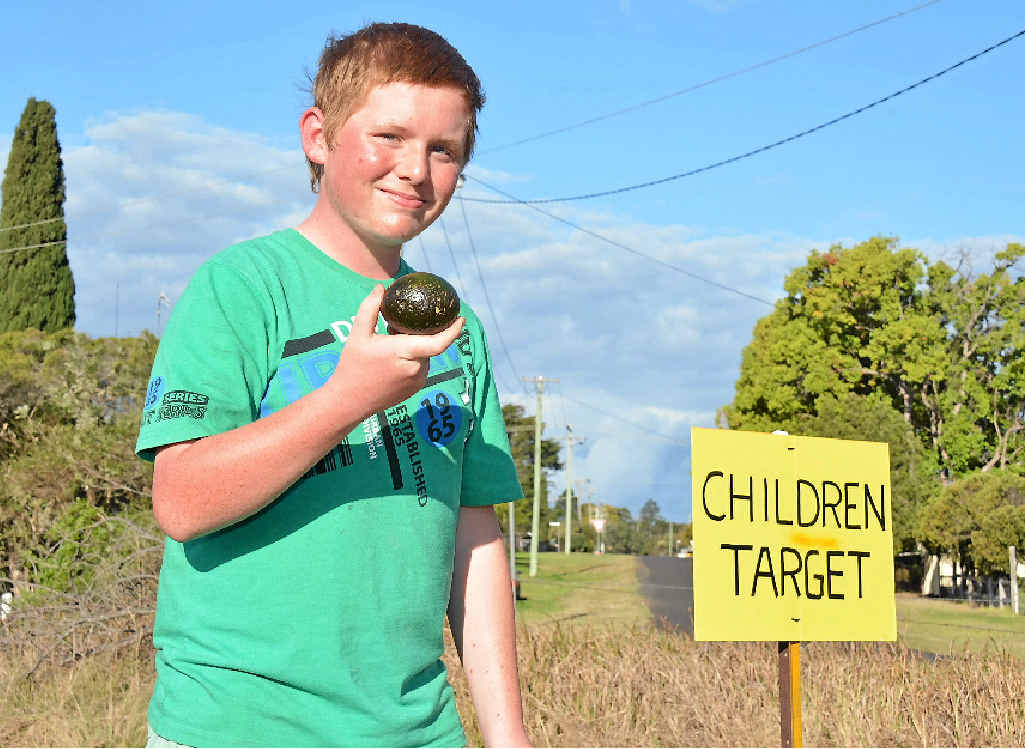 GREAT WORK: Harrison Lamberth, 13, from Blackbutt said helping out at the festival was all the fun he needed.