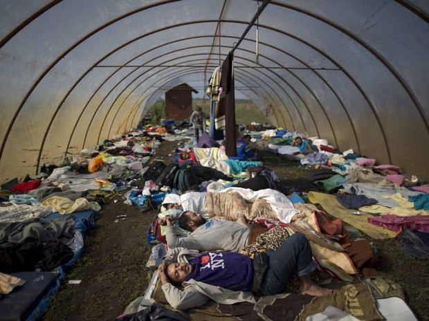 WITHOUT A HOME: Syrian people sleep inside a greenhouse at a makeshift camp for asylum seekers near Roszke, southern Hungary, at the weekend. Hundreds of thousands of Syrian refugees and others are still making their way slowly across Europe, seeking shelter where they can.