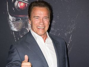 Arnold Schwarzenegger: 'eat less meat to save the planet'