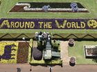 Complete guide to 2015 Toowoomba Carnival of Flowers