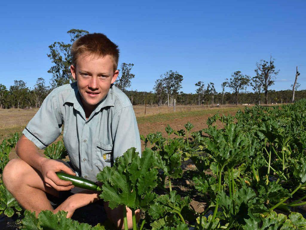 YOUNG FARMER: Bondoola's Paddy McBryde with his organic zucchini crop.
