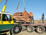 Couple's Australian jade boulder likely world's biggest