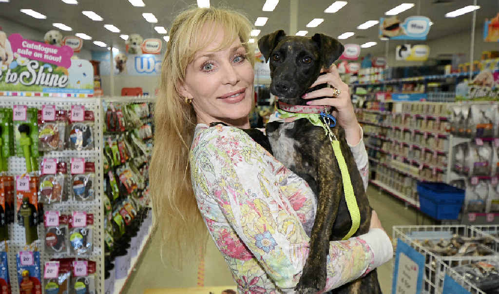 CAN YOU HELP?: Silver Lining Pet Rescue's Marianne Mattingly-Ferris, with seven- month-old Shiloh. Pet Stock Maroochydore hosted the not-for-profit group as part of the nationwide pet foster day.