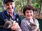 Koalas at The Currumbin Wildlife Sanctuary on the Gold Coast were officially named Little Lady and Elliot. Peter Gash holding Elliot the koala and Jann Stuckey MP is holding Lady. Photo Contributed
