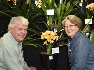 Carnival of Flowers' small events charm visitors