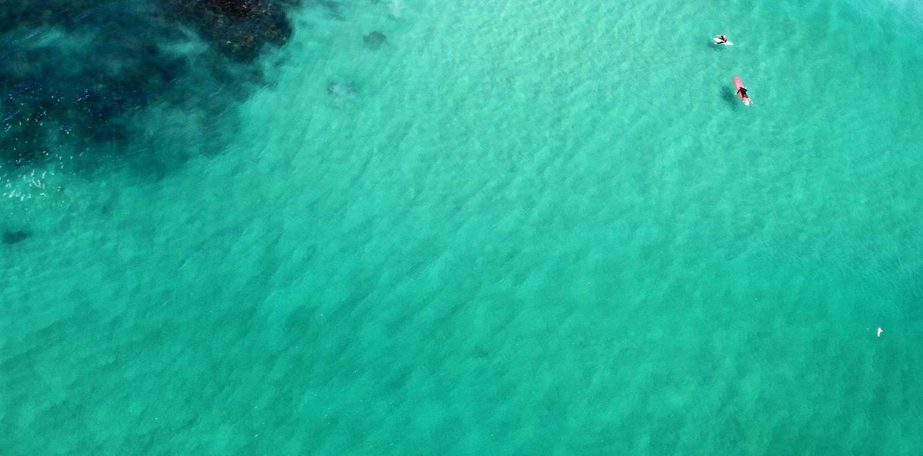 An image provided by Rotorwing Helicopter Services showing a 3m shark it was monitoring off Flat Rock on September 22.