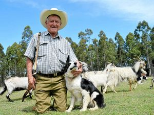 Tatham grazier wins a handful of titles at Dog Championships