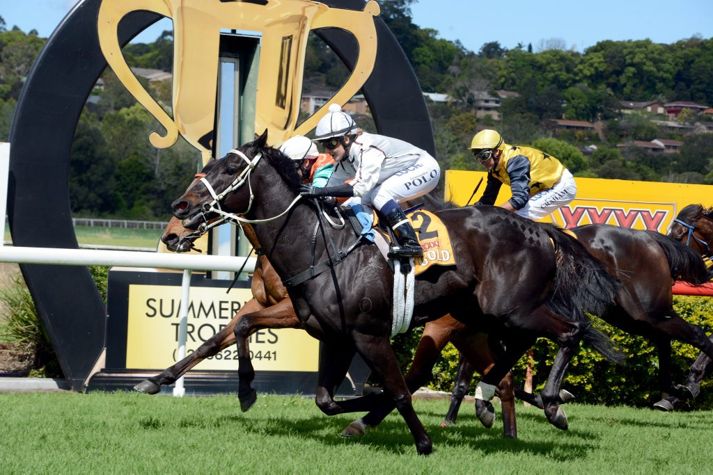 Spatha (#2), ridden by Samantha Polo, won the Lismore Workers Club Rousillon Handicap at the Lismore Cup raceday. Photo Cathy Adams / The Northern Star