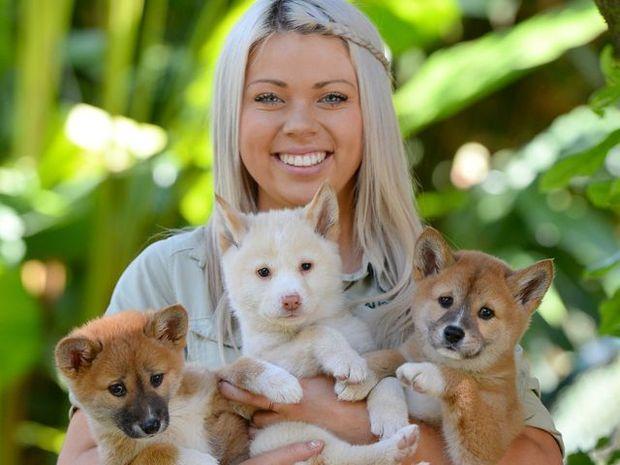 Australia Zoo's newest residents