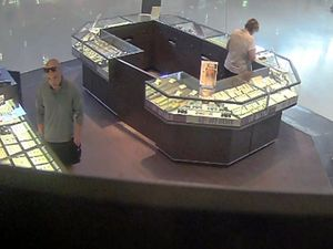 Police release CCTV image of jewellery theft