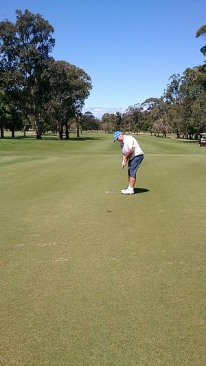 Paul Wilson from the Ballina Golf Club lines up a put on his home course.