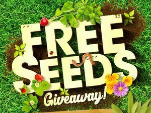 QUIZ: Are you a gardening mastermind?