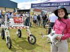 FUTURE OF FARMING: Mechatronic engineering research fellow Dr Cheryl McCarthy with a drone and a ground-based robot.