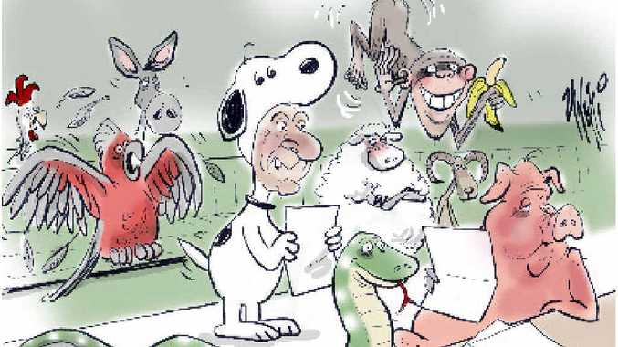 GONE TO THE DOGS: Chris Gulaptis described himself as the 'Snoopy' of parliament. Cartoon: Paul Zanetti
