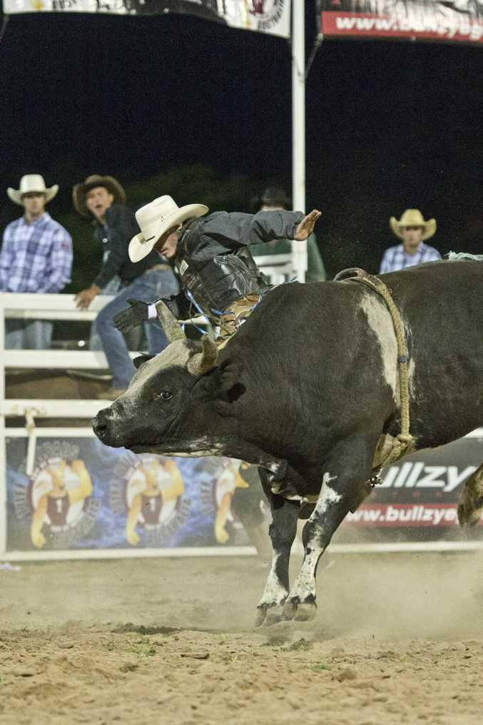 Cody Heffernan on Bluedog Bluey. PBR All Star Challenge, Bull Ride, Toowoomba. Saturday, Oct 03, 2015 . Photo Nev Madsen / The Chronicle