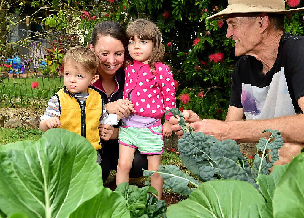 SOW GOOD: Joshua, 1, Amy and Gabrielle Diesel, 3, with Duncan McNaught at one of the many edible garden beds at Urban Food Street, Buderim. INSET: Costa Georgiadis.