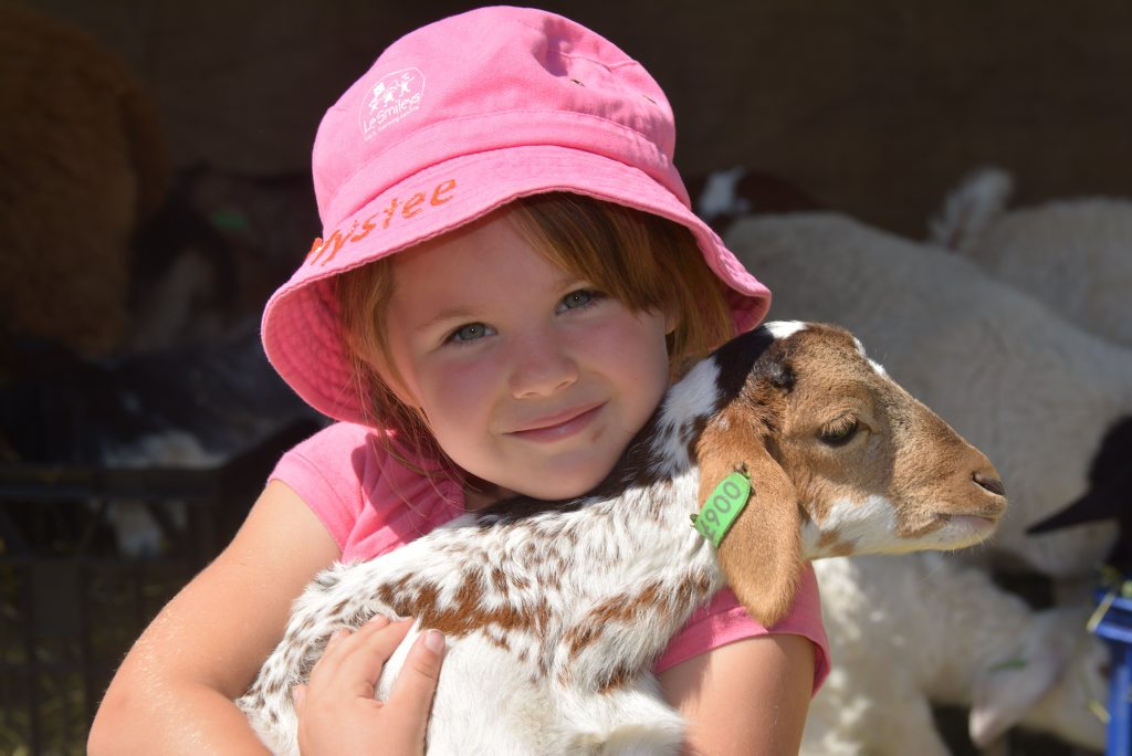 Mystee Adams, 5, enjoys a fun day out at the Heritage Museum. Photo Kate Darvall/ South Burnett Times