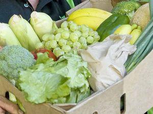 Explore organic food during its national week
