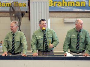 Rocky Brahman Week sales 2015