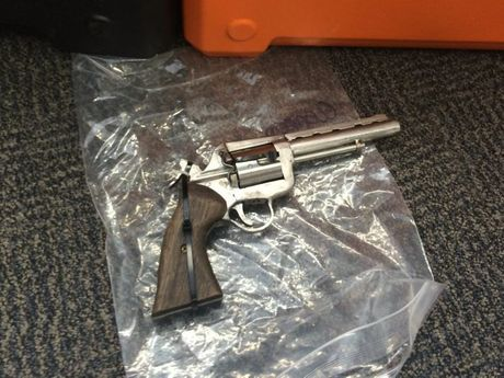 A loaded .357 handgun was allegedly found under a bed during a raid on a Forest Glen property.
