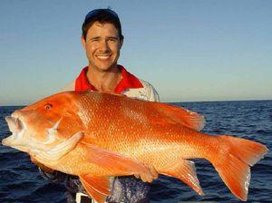 FISHING TAILS: Barramundi and salmon on the chew