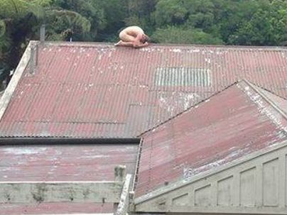 The frozen Chook on the roof of a house. PHOTO: Facebook - Frothpit