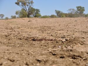 Drought results in 60% business downturn in western towns