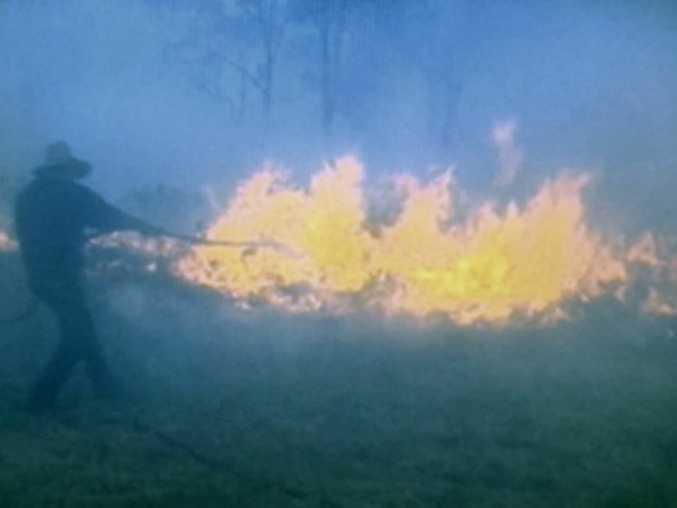 West Haldon residents and firefighters work side-by-side to fight a raging fire that threatened properties around the area this week. Photo Peter Collins / Ch 7