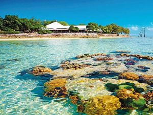 Heron Island: DIY-lovers' island dream - and it's for sale