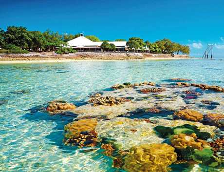 Reef off Heron Island - Courtesy of GAPDL