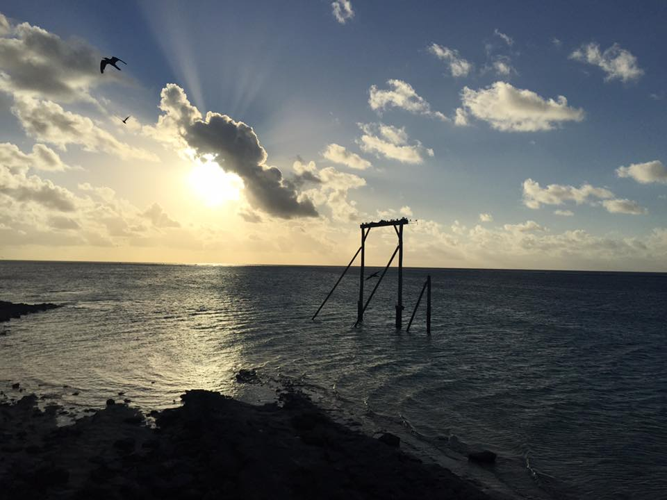 Lana Jean Rhodes shared this photo from her trip to Heron Island.