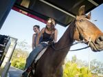 Calliope Teens take horse through McDonalds drive-thru