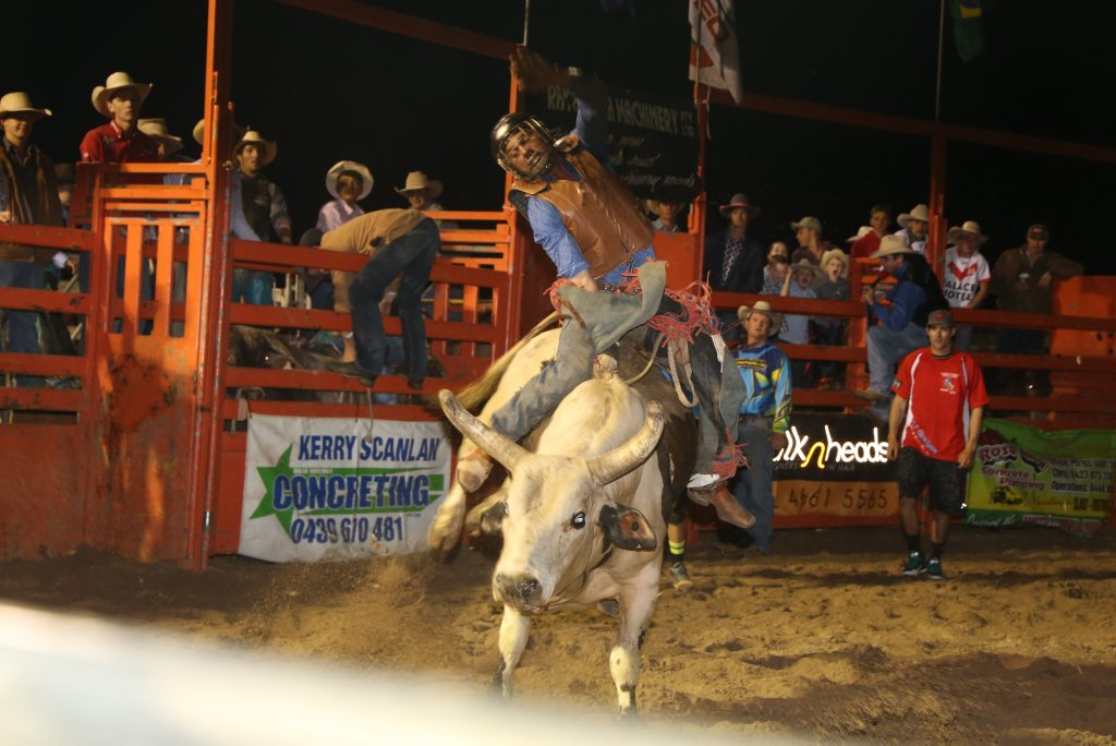 Bull riding action.