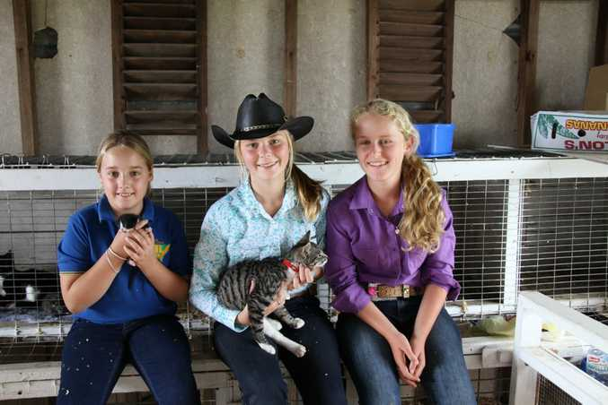 Kyogle Rural Youth members Charliez Taylor, 9, Emily Davis, 14 and Zoe Davis, 13, all of Kyogle at the 2015 show.