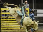 Lucas Mckenzie wins the Rookie Bull on Booger Eater at Top Guns on Saturday Night. Photo Allan Reinikka / The Morning Bulletin