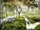 Artist's impressions of the proposed Kershaw Gardens redevelopment following Cyclone Marcia. This area shows the park's open spaces. Photo contributed.
