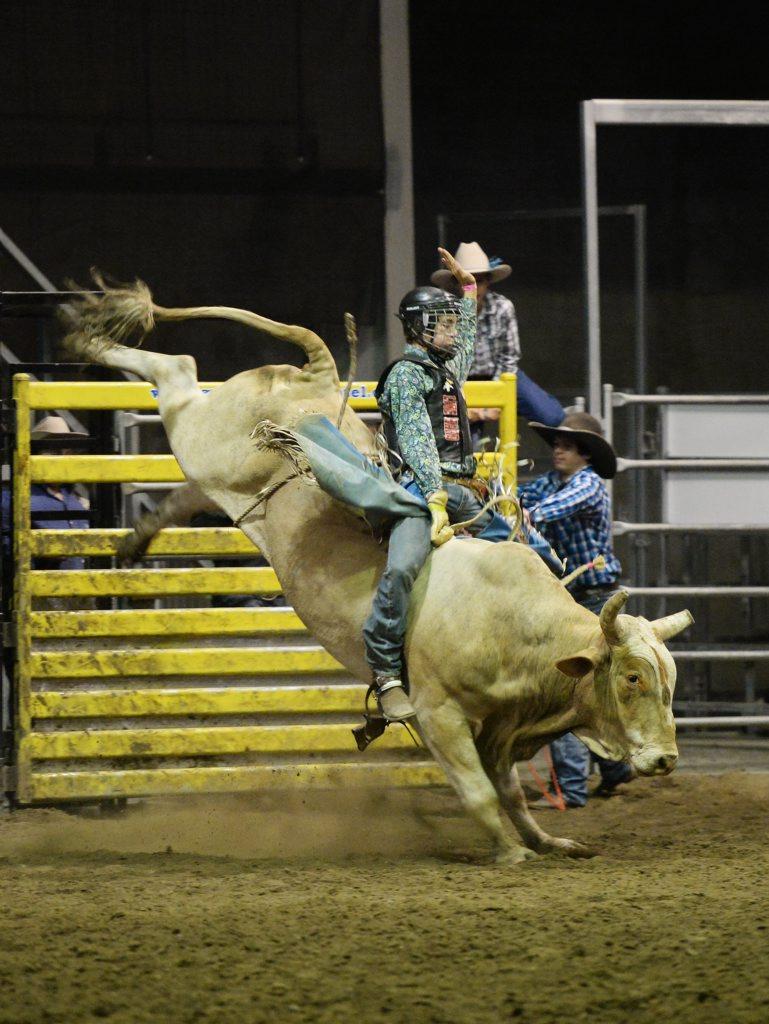 Lucas Mckenzie wins the Rookie Bull on Booger Eater at Top Guns on Saturday Night. Photo Allan Reinikka / The Morning Bulletin