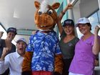 Pumpa the Wonder Horse will have all the support of his Mackay cheer squad; Lisa Ireland, Mick Pope, Ellie Freestone and Gab Dicarlantonio when he enters Hamish and Andy's 'Race That Slows Down The Nation' in Vicotoria November 2. Photo: Emily Smith / The Daily Mercury.