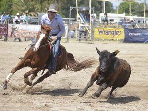 Saddle bronc rider shows top form in campdrafting
