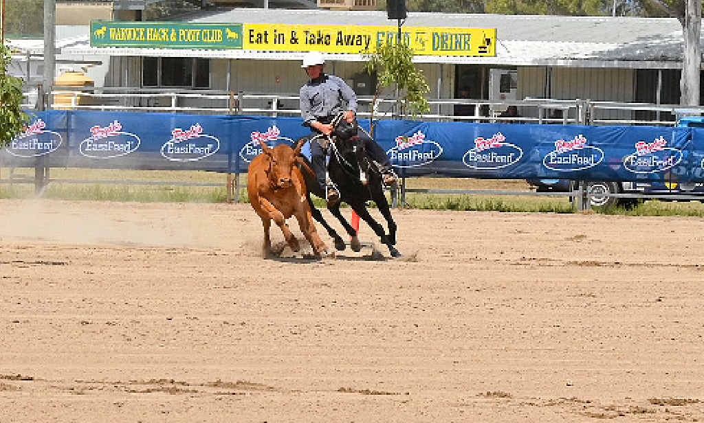LIFETIME COMPETITOR: Local Michael Boyce has competed in the Warwick Gold Cup Campdraft for 50 years.
