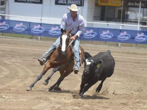Webster and Bob top the table in Warwick Campdraft