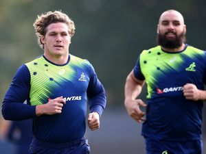New-look Pumas aiming  to match Wallabies' flair