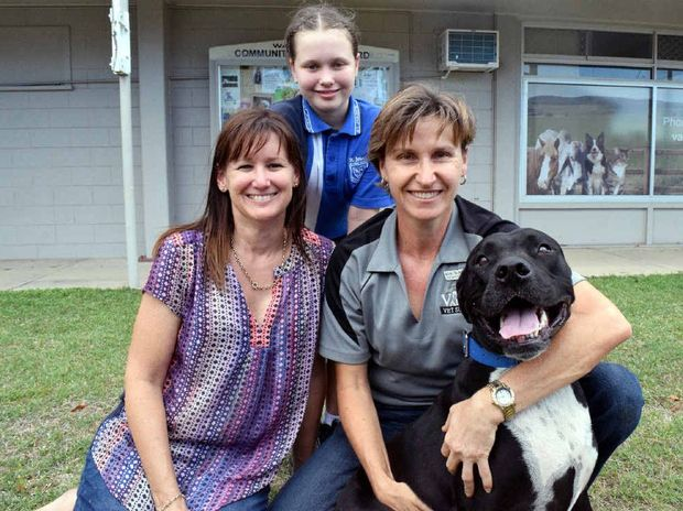 RECOVERED: Three-year-old Baz the pooch back to normal, and joins owner Louise Craig (left), daughter Tiana, 10, and veterinarian Kim McPherson for a happy snap.