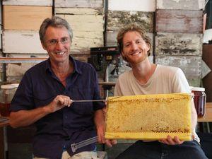 Flow hive will be buzzing on Australian story tonight