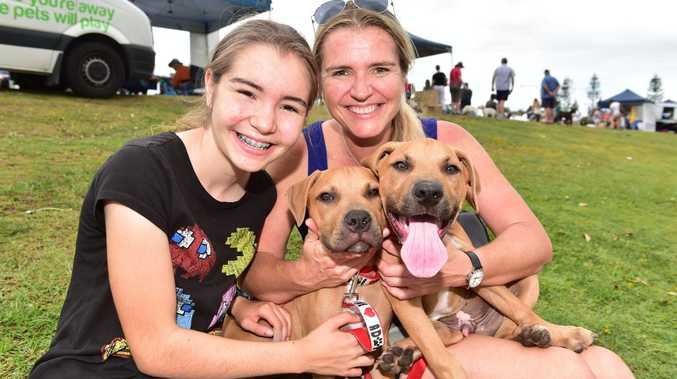 Gabby and Kylie Gretener with Max and Arry who are up for adoption through Animal Angels.