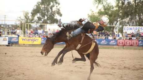 See some live action at the Warwick Rodeo every October.