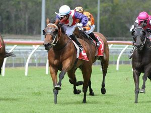 Back a Melbourne Cup winner with the Sunshine Coast Daily